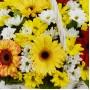 Корзина Герберы и хризантемы
